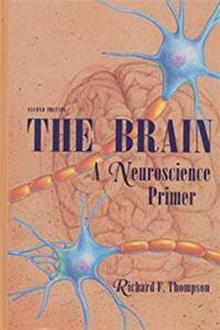 Download The Brain: A Neuroscience Primer (Series of Books in Psychology) ePub