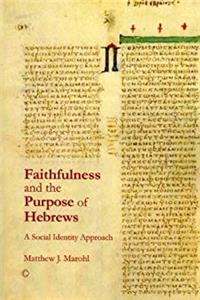 Download Faithfulness and the Purpose of Hebrews: A Social Identity Approach ePub