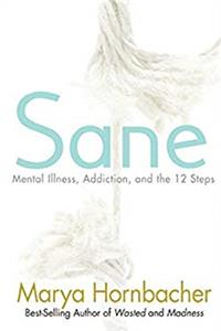 Download Sane: Mental Illness, Addiction, and the 12 Steps ePub