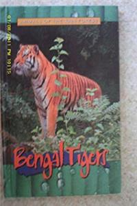 Download Bengal Tigers (Animals of the Rain Forest) ePub